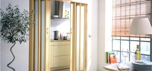Примеры фото дверей-ширм