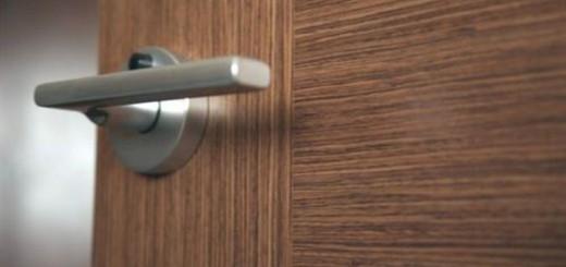 Двери пвх или шпон: что лучше