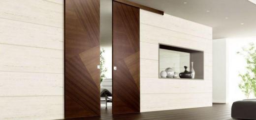 Преимущества и свойства роликовых межкомнатных дверей