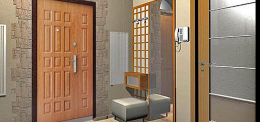 Входные металлические полуторные двери: разновидности